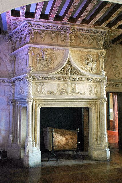 Fireplace of Chaumont-sur-Loire castle, Loir-et-Cher, France. I love this fireplace...I can see me curled up with a good book, roaring fire, snow storm outside...Or lying on the fur rug drinking a glass of wine, embers smoltering, king kissing my neck....