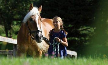 PFERDEZUCHT – Storchenhof – Pony riding