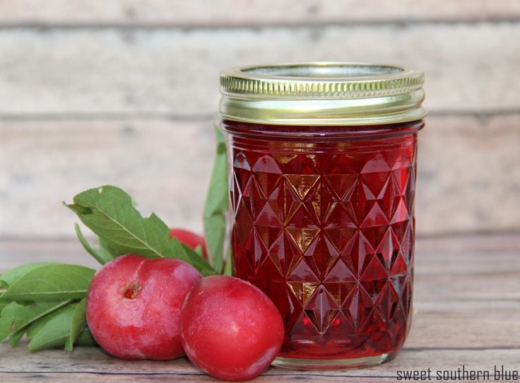 Plum Jelly Recipe (with pectin) - Sweet Southern Blue