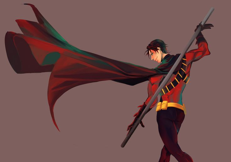 Red Robin. Tim Drake.                                                                                                                                                                                 More