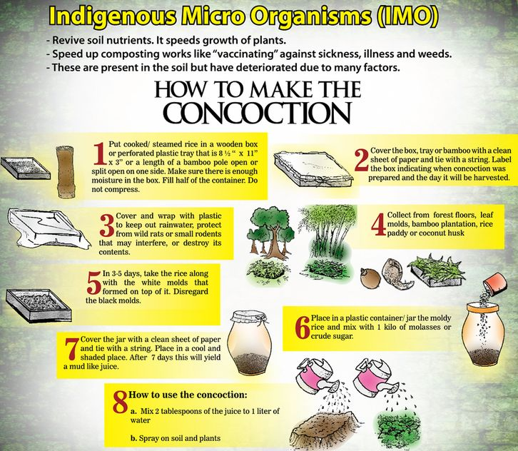 How To Capture Cultivate Preserve And Use Indigenous
