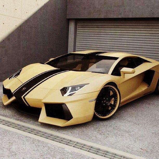 Lamborghini Financing: 12 Best Images About Gold Cars On Pinterest