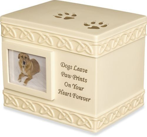 Best price on AngelStar 5-Inch Pet Urn for Dog, New See details here: http://cutepetmart.com/product/angelstar-5-inch-pet-urn-for-dog-new/ Truly a bargain for the brand new AngelStar 5-Inch Pet Urn for Dog, New! Look at at this budget item, read customers' comments on AngelStar 5-Inch Pet Urn for Dog, New, and get it online not thinking twice! Check the price and Customers' Reviews: http://cutepetmart.com/product/angelstar-5-inch-pet-urn-for-dog-new/ #dog #puppy #cute #eyes…