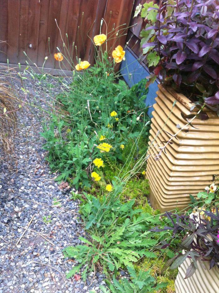 4592 best gartengestaltung – garten und landschaftsbau images on, Garten ideen