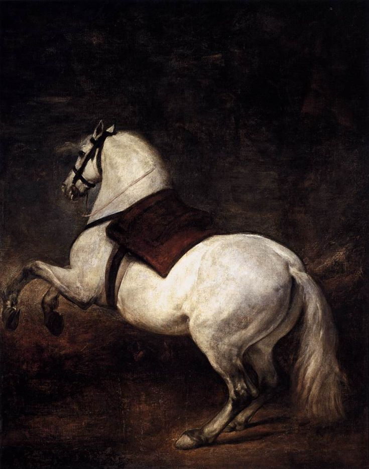 VELÁZQUEZ, Diego Rodriguez de Silva y A White Horse 1634-35 Oil on canvas, 310 x 245 cm Palacio Real, Madrid