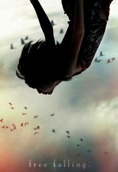 """""""El camino del amor no es un argumento sutil, su puerta es la devastación.  Los pájaros dibujan grandes círculos en el cielo con su libertad.  ¿Cómo lo aprendieron? Ellos caen, y mientras caen, se les dan alas."""" -Rumi"""