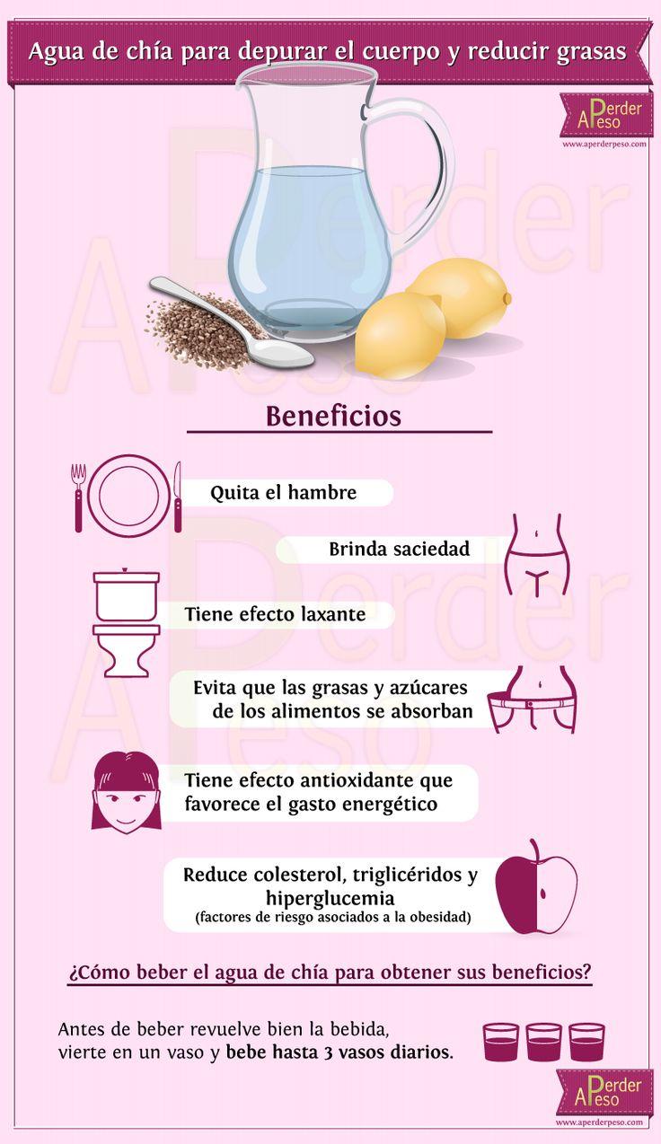 agua-de-chia: 1 litro de agua. 1 cucharada de semillas de chía Zumo de 2 limones. Edulcorante a gusto (preferentemente stevia)