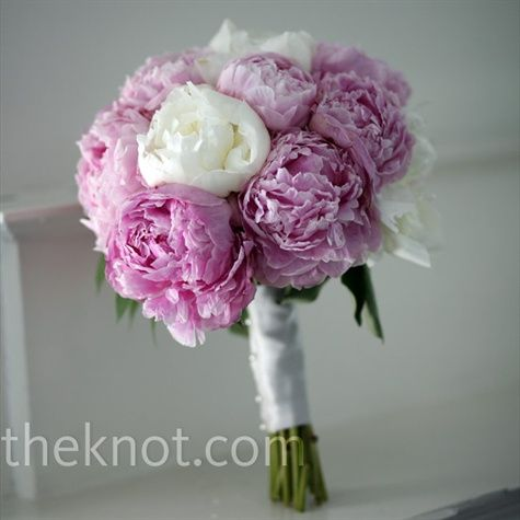 Love the peonies in this bouquet.  Would definitely do it in pink and white, but love the overall look.: Bridal Bouquets, Pink Wedding Bouquets, Pink Weddings, Wedding Photos, White Peonies, Purple Peoniesgorg, Peonies Bouquet, Bridesmaid Bouquets, Favorite Flower