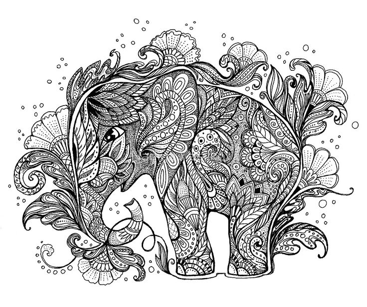 Beautiful Elephant With Floral Ornament By Nadiya Vasilkova Adult Colouring PagesPrintable