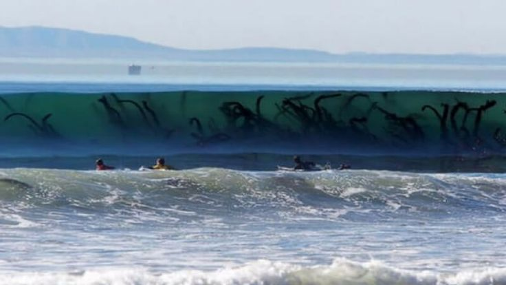 15 Scary Ocean Pics That Prove Deep Waters Can Be a terrifying Place