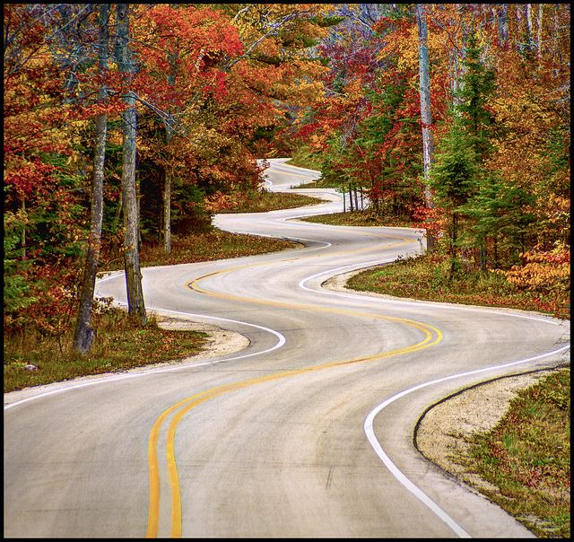 Curvy Road - Door County Wisconsin. Judith and I drove down this road....we hadn't known of it until we saw it !!! It's on our way to ferry docks.JBC