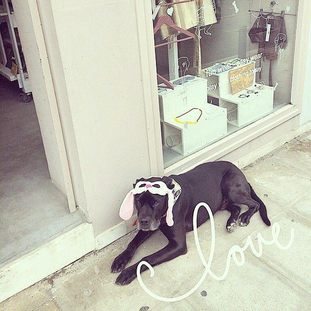 #mushi the #easterbunny wishing ya a wonderlous time and lots of #love above all!!!! AkiraMushi store in Halandri