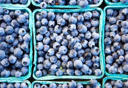 Le #bleuet: un puissant #antioxydant