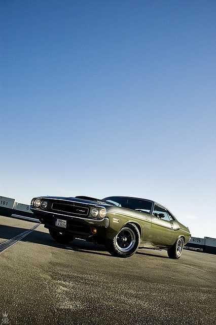 1970 Dodge Charger Rt: 17 Best Images About DODGE CHALLENGER On Pinterest