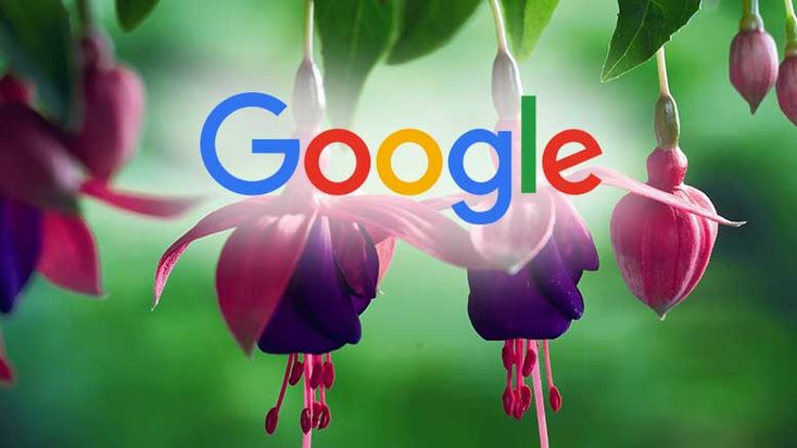 Google, the big tech company is reportedly known to add one more OS in the list…