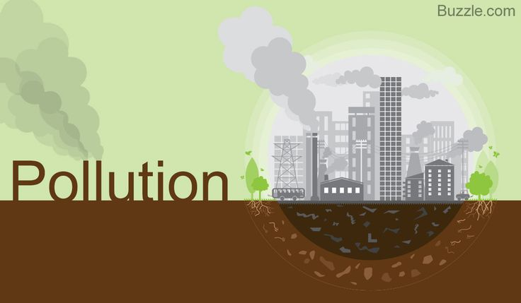 How do Humans Affect the Environment - Pollution