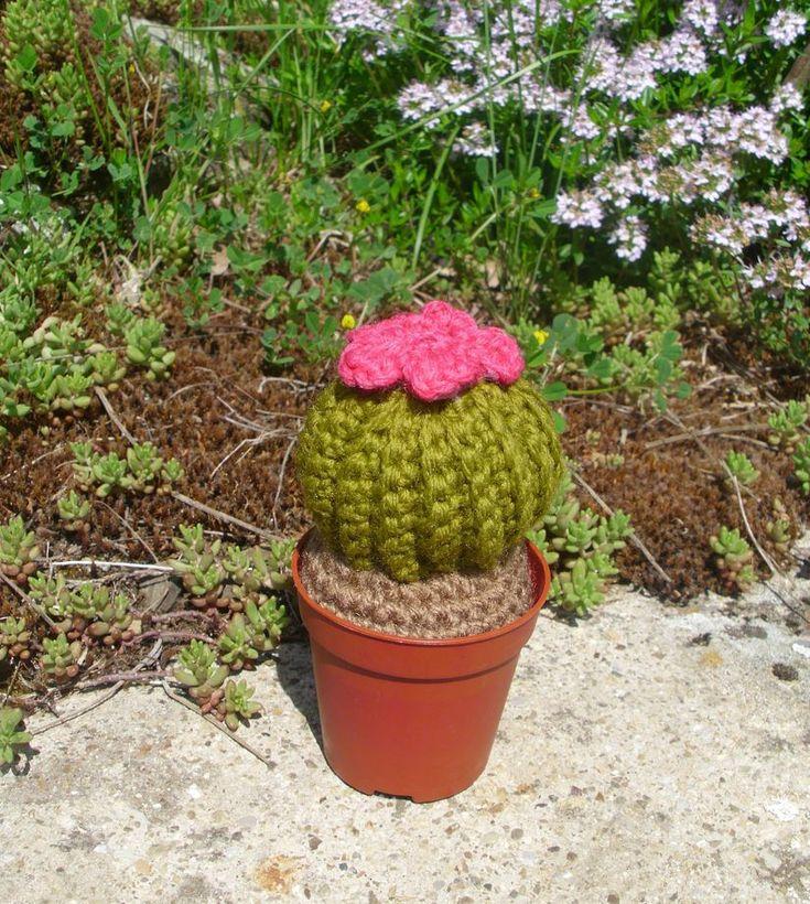 Cactus in amigurumi   Risultato finale   FOTO