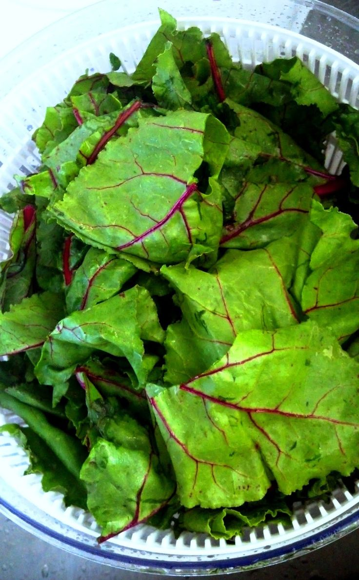The top greens of beets are an excellent source of carotenoids, flavonoid antioxidants, and vitamin A. The greens actually contain these c...