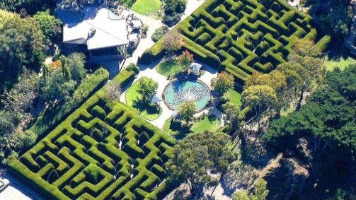Ashcombe Maze and Lavender Gardens in Shoreham, Victoria, Australia