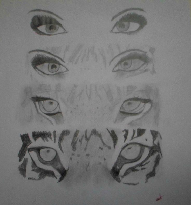 Transformacion de ojos