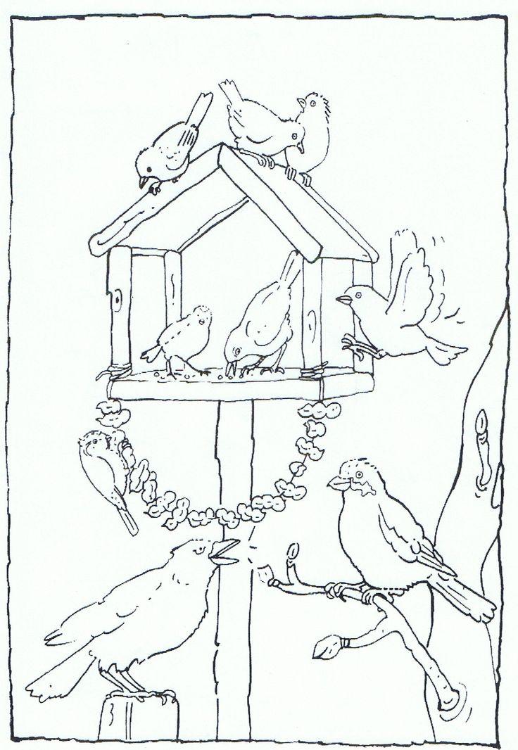 Feeding birds in your garden coloring page | Vogels voeren in je tuin kleurplaat | #kleurplaat #vogels #birds