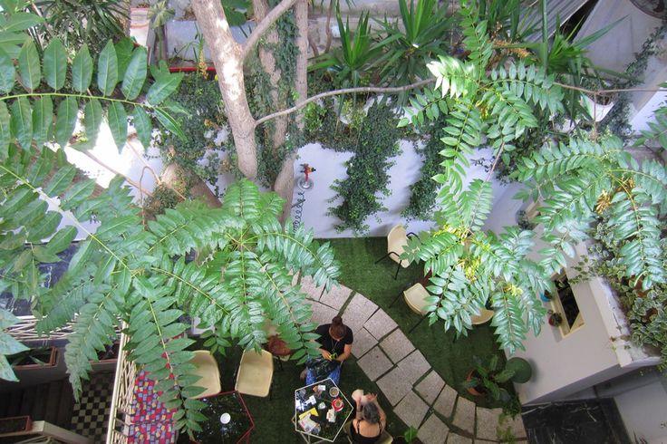Ένας γκρίζος και εγκαταλειμμένος ακάλυπτος μεταμορφώθηκε σε τροπικό κήπο στο εσωτερικό της ιστορικής στοάς Κολόμβου.