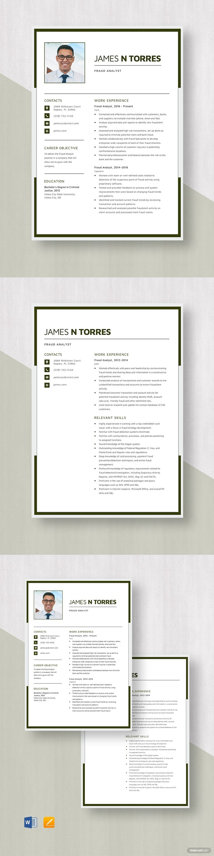 Fraud analyst resume template in 2020 resume template