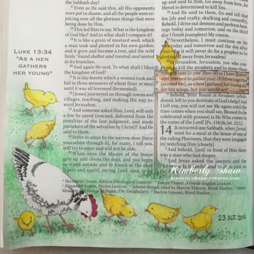 For Luke 13:34 I chose to illustrate a hen with her seven chicks in the wide margin of my Amplified Bible, rather than chicks under their mother's wings as the verse reads, though that is an endearing image depicting Jesus' sincere love and protection for His people.  The artwork was created with a pencil sketch, watercolor pencil for the grass and sign, and Japanese watercolor for the chicks and hen.