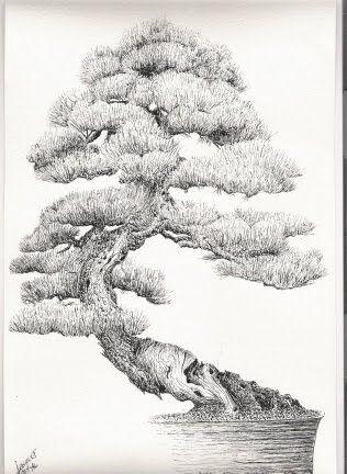 Best 25 bonsai tattoo ideas only on pinterest bonsai - Dessin bonzai ...