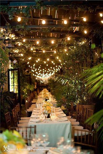 This is a great idea to bring the outdoors into an indoor wedding reception. The lush greens with the lights add to make this an extra intimate affair.