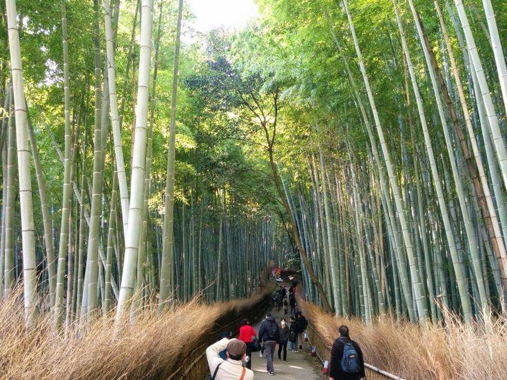 Kyoto a