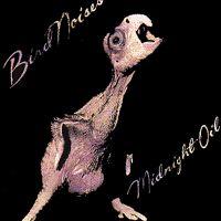 """Midnight Oil """"Bird Noises"""""""