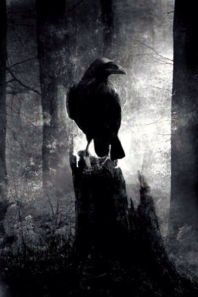 lady macbeth the raven himself is hoarse Get an answer for 'what is the meaning of the raven himself is hoarse/that croaks the fatal entrance of duncan/under my battlements in macbethact i scene v, lady.