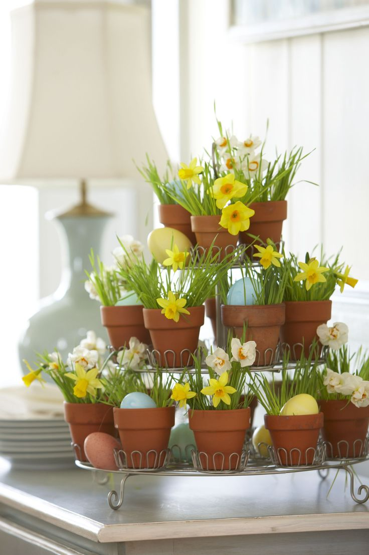 """Cupcake Holder Centerpiece  Re-purpose a tiered cupcake holder by inserting  2"""" terracotta pots in the cupcake holder slots.  Add blades for fresh wheat grass, which you can get from the health food store and alternate each pot with small daffodils and dyed eggs.  Place a glass votive holders or small glasses with water inside the pots where you are placing flowers."""
