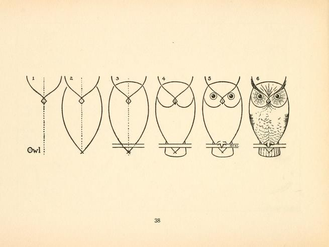 What to draw and how to draw it by EG Lutz. #owl