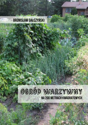 TZM Polska :: OGRÓD WARZYWNY NA 200 METRACH KWADRATOWYCH