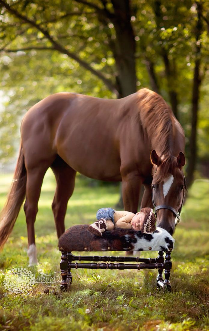Baby by a horse