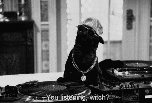Sabía cómo alegrar cualquier fiesta sin necesidad de mucho esfuerzo. | 26 Razones por las que Salem era el mejor miembro de Sabrina la bruja adolescente