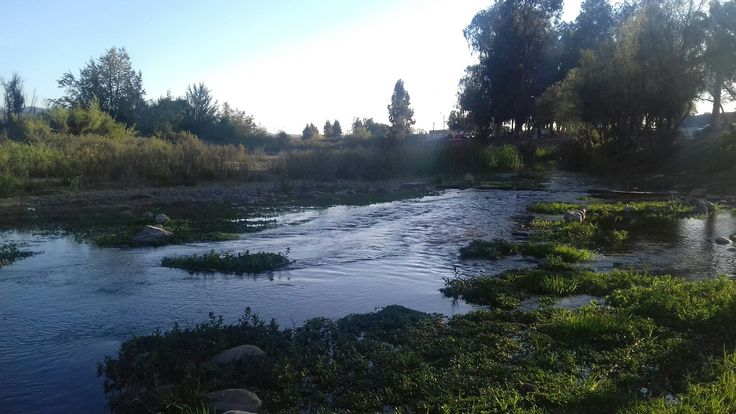 Los Peñones, Ovalle, CHILE