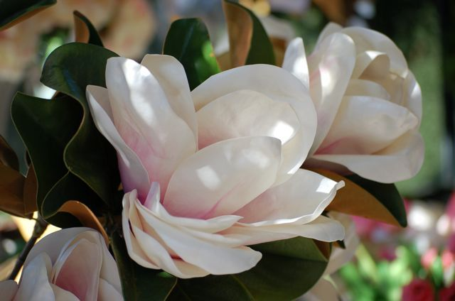 Flor de magnolio artificial