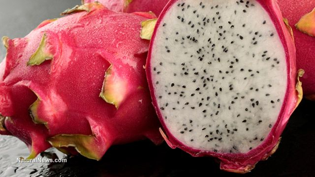 Dragon fruit - it's amazing health benefits include rich amounts of Vitamin C to rid of free radicals in our body and high Calcium content which helps improve nerve functioning and keeping bones strong.