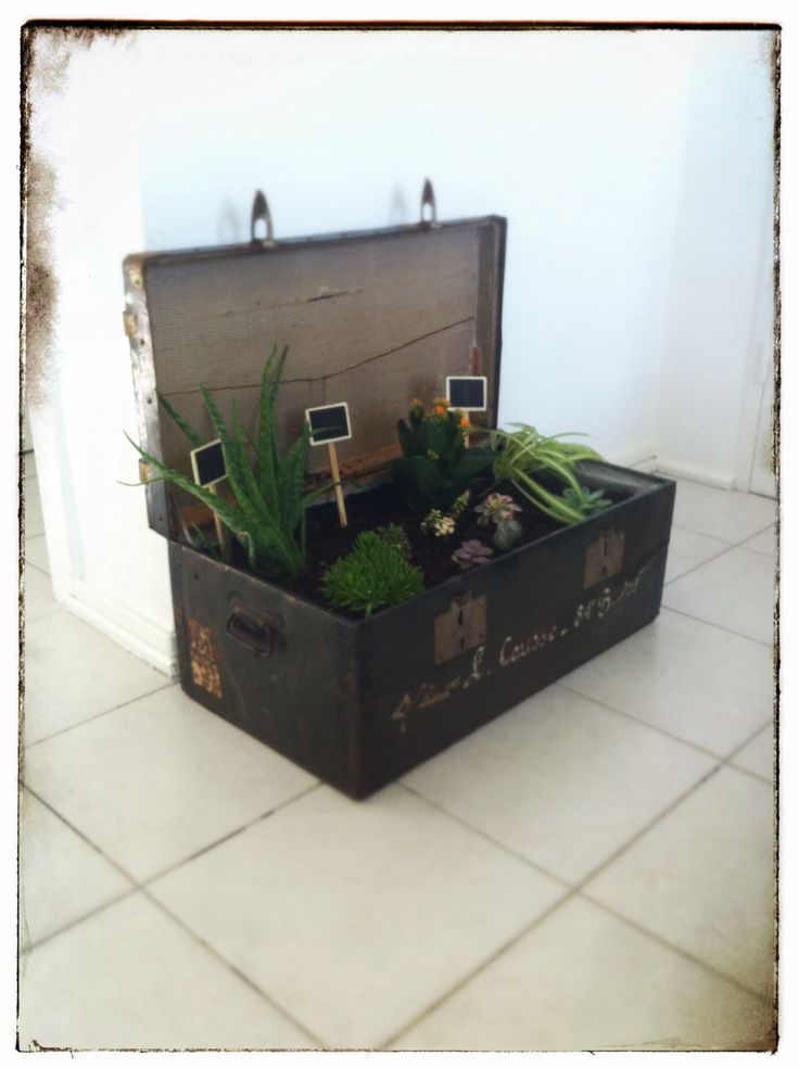 cache pot de fleur r alis dans une vieille malle ou. Black Bedroom Furniture Sets. Home Design Ideas