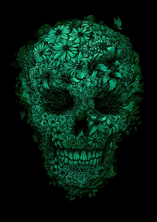 #skull #illustration