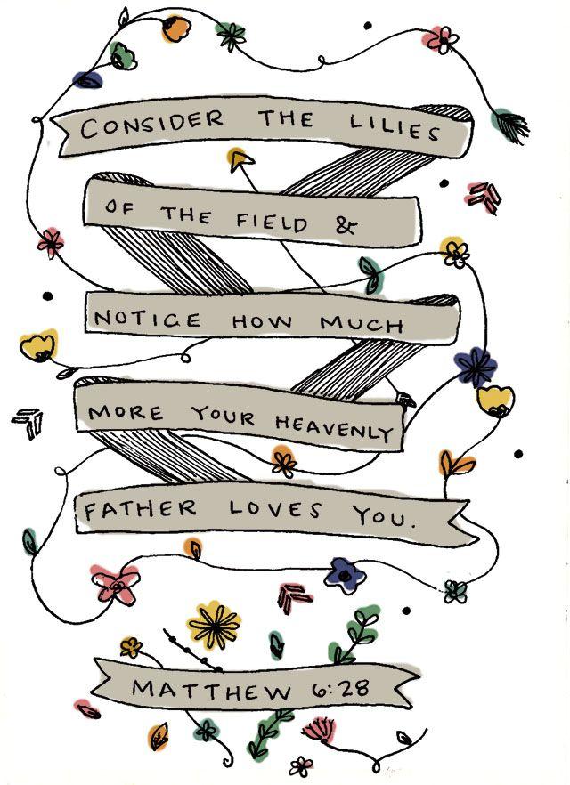 Lilies Of The Field.... Matthew 6:28