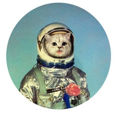 astronaut kittehCat Art, Spaces Cat, Moon, Nyan Cat, Cat Tattoo, Kittens, Kitty, Art Illustration, Outer Spaces