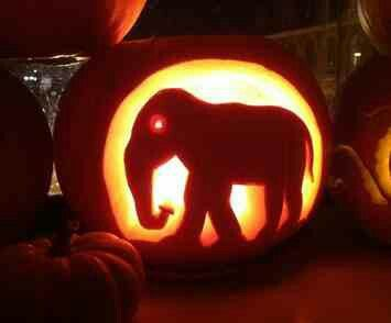 Elephant Pumpkin Carving In 2018 Patterns