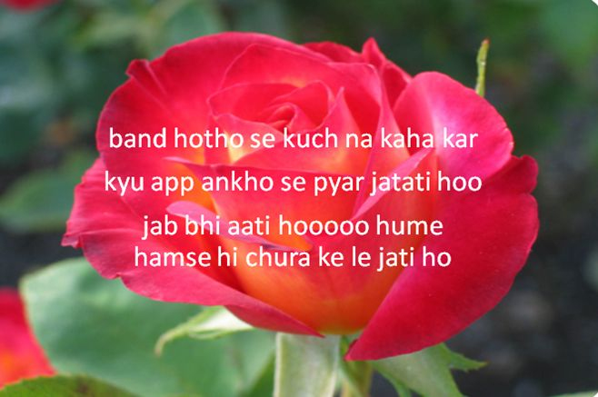 romantic words in hindi for wife