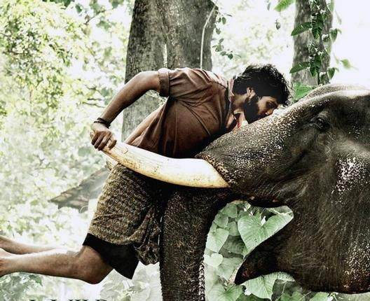 Vikram Prabhu in Kumki Movie