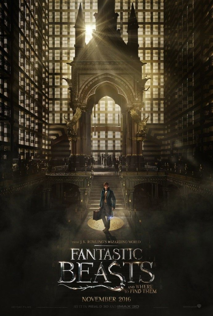 First 'Fantastic Beasts and Where to Find Them' Trailer: J.K. Rowling's Wizarding World is Back