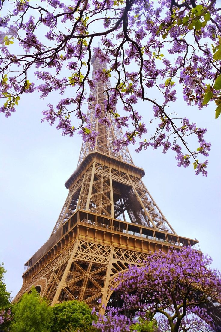 Flowers over Eiffel Tower  ♥ ♥  www.paintingyouwithwords.com